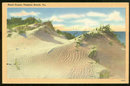 Postcard of Sand Dunes, Virginia Beach, Virginia