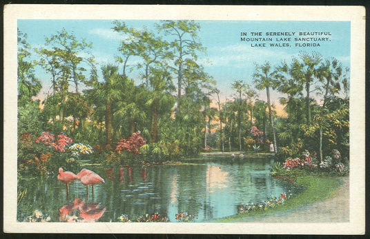 Postcard of Mountain Lake Sanctuary Lake Wales, Florida