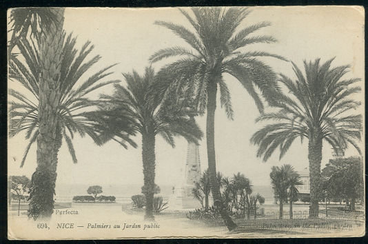 Postcard of Nice, France Palmiers au Jardan Public 1918