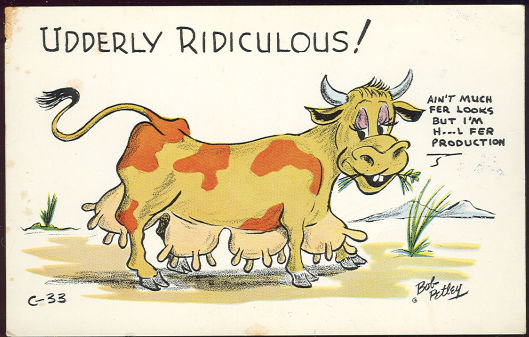 Comic Bob Petley Postcard of Udderly Ridiculous Cow