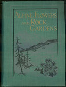 Alpine Flowers and Rock Gardens by Walter Wright 1913