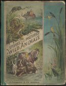 Stories and Pictures of Wild Animals by Anna Burnham