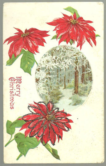 Merry Christmas Postcard With Poinsettias and Trees