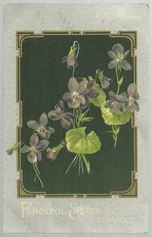 Peaceful Easter To You Postcard with Violets 1910