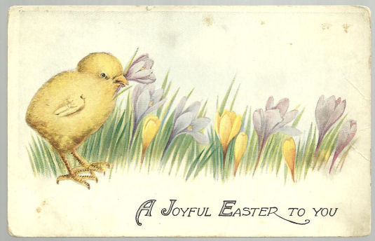 Joyful Easter to You Postcard with Chick and Crocuses