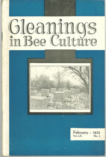 Gleanings in Bee Culture February 1932 Sweet Clover