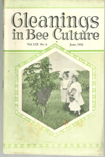 Gleanings in Bee Culture June 1931 Comb Honey