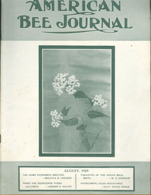 American Bee Journal August 1929 American Honey Exports
