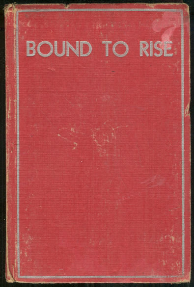 Bound to Rise by Horatio Alger Story of a Country Boy