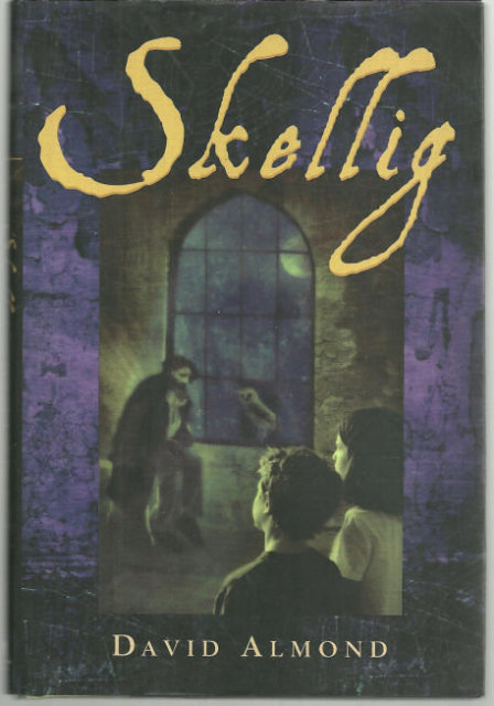 an essay on the book skellig
