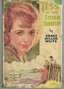 Tess of the Storm Country 1909 Photoplay edition with DJ