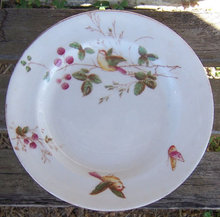 Decorative Plate with Birds and Berries and Gold Trim