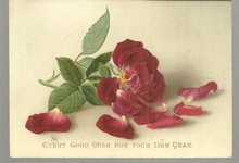 Victorian Good Wish for New Year Card with Red Rose