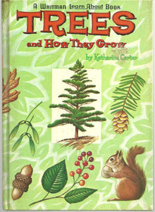 Trees and How They Grow by Katherine Carter 1961 Illus