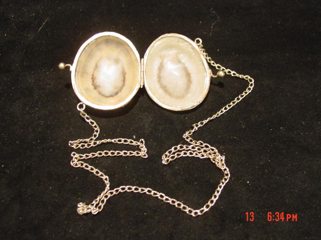 Antique Shell & Silver Change Purse Snuff Purse
