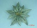 ORA Swarovski Rhinestone Masonic Shriners Rhodium Plated Flower Brooch Pin