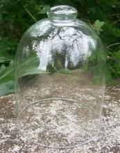 Bell Jar Cloche Dome: 1800's