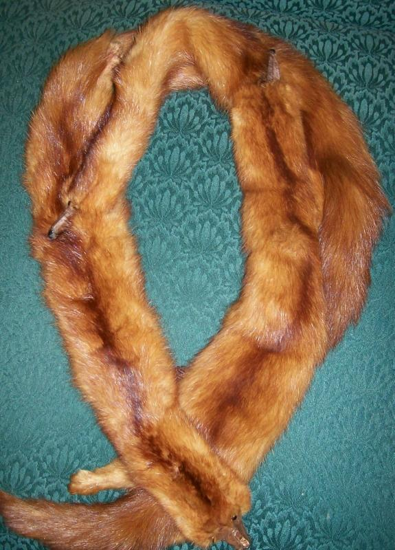 Triple Mink Fur Wrap: Heads & Tails: 1940's-50's Red-Brown