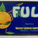 Florida Citrus Label