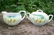 R. S. Germany Porcelain Cream & Sugar Set Ca. 1900 Green & White Poppies