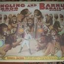 Vintage 1960's Circus Poster Reprints Barnum/Ringling Lions P114