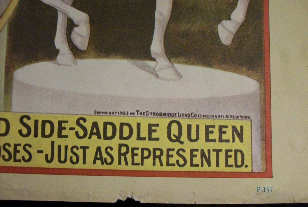 Vintage 1960's Circus Poster Reprints Barnum & Bailey Side Saddle Equestrian  P157