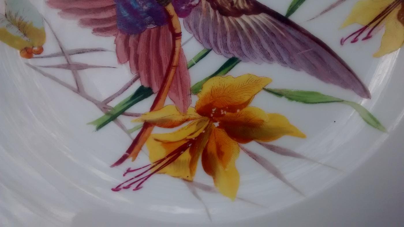 Limoges Hummingbird Plate Ca. 1900 9.5