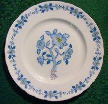 Tuscan Bone China Plate TUS65
