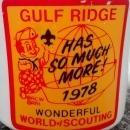 Boy Scout Mug 1978 Gulf Ridge Big Boy Wonderful World of Scouting