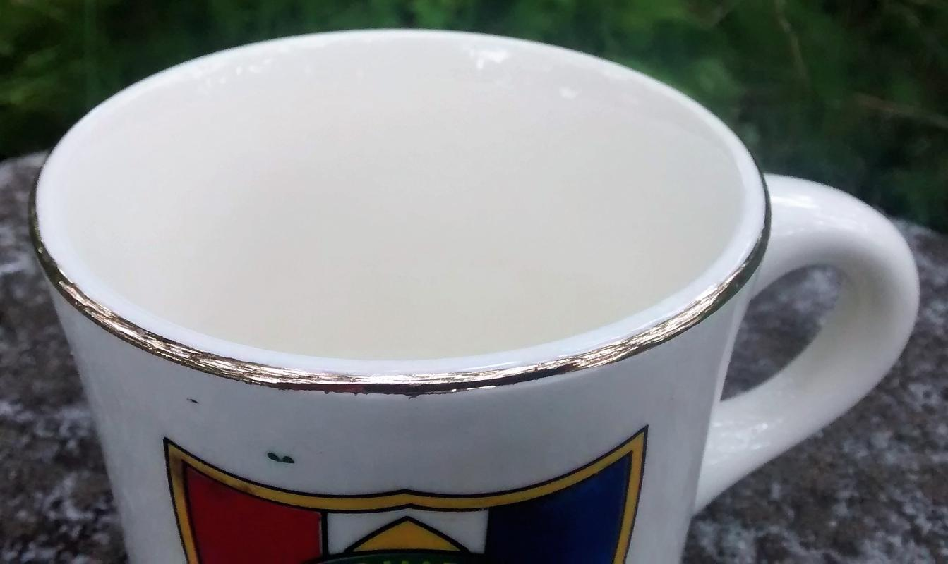Boy Scout Mug 1970s Schiff Scout Reservation