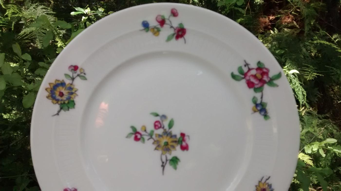 C.F. Haviland CHF1572/1616 Limoges Porcelain Plate Pair 6.5