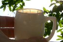 Opal/ Milk Glass Barrel Toothpick/ Mini Mug Ca. 1900