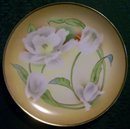 Weimar Bavarian Hand Painted Ceramic Plate White Flowers on Peach 8.5