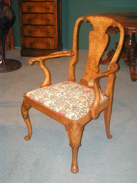 A fine and rare set of 12 English Burr Walnut Queen Anne  Dining Chairs .The set comprises of 10 Side Chairs and 2 armchairs