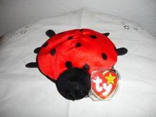 Ty Beanie Baby Ladybug