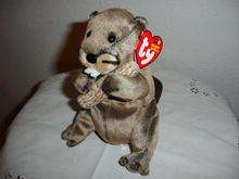 Ty Beanie Baby Beaver