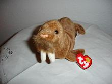 Ty Beanie Baby Walrus