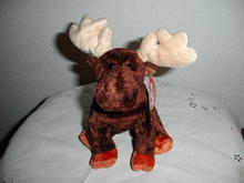 Ty Beanie Baby Moose