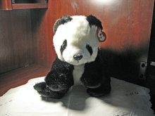 TY Panda
