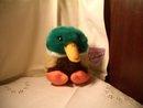 Puffkins Duck