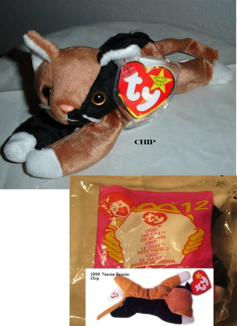 TY Beanie Baby & Teanie Beanie Pair of Cats
