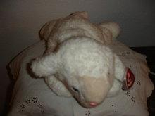 TY Beanie Buddy  Lamb