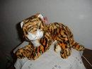 TY Beanie Buddy  Tiger