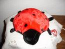 TY Beanie Buddy Ladybug