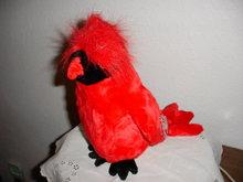 TY Beanie Buddy Cardinal