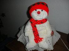 TY Beanie Buddy Snowboy
