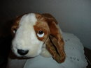 TY Beanie Buddy Dog
