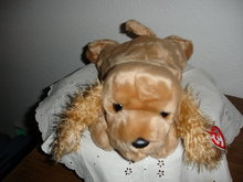 TY Beanie Buddy Cocker Spaniel