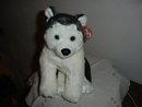 TY Beanie Buddy Husky