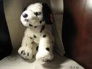 TY Beanie Buddy  Dalmatian